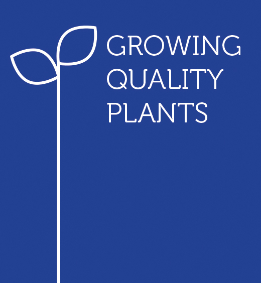 Growing Quality Plants